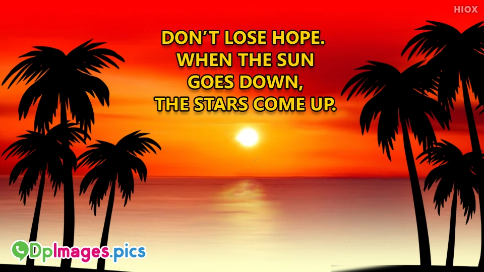 Don't Lose Hope Quotes