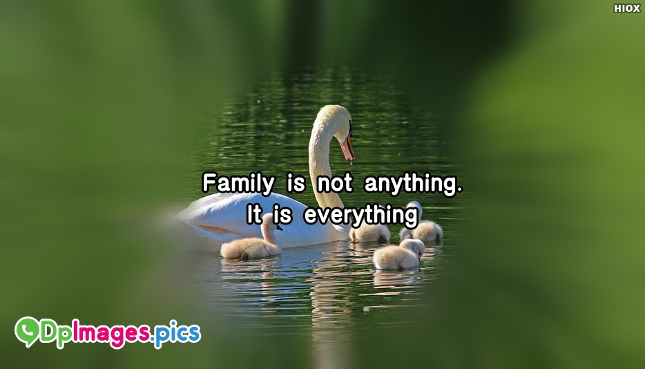 Family is Not Anything. It is Everything - Whatsapp Dp for Family