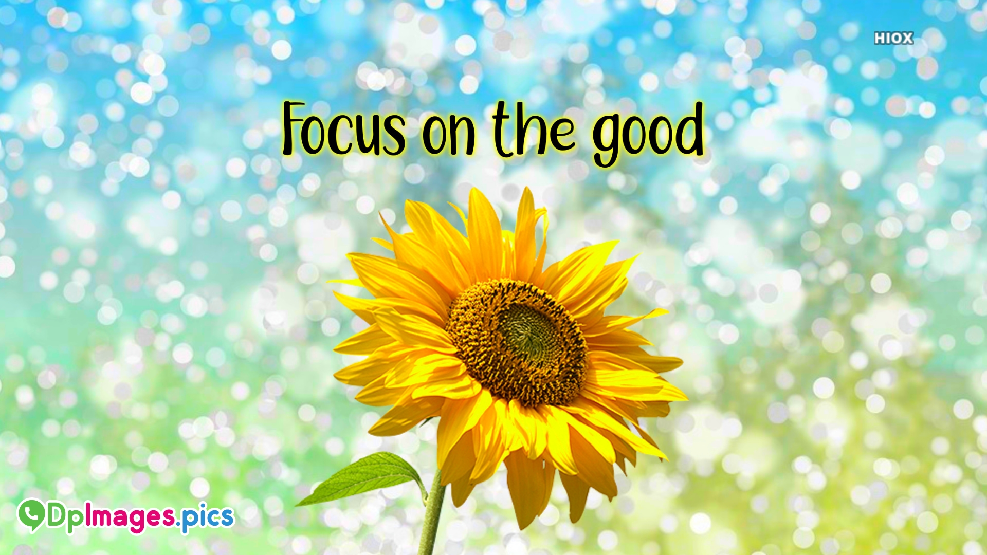 Focus On The Good Text