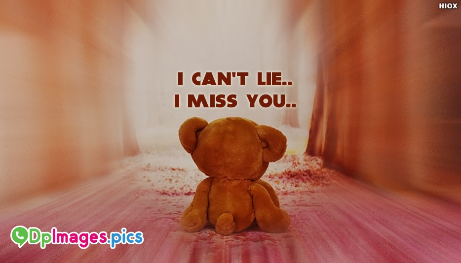 I Cant Lie I Miss You - Whatsapp Dp about Missing Someone