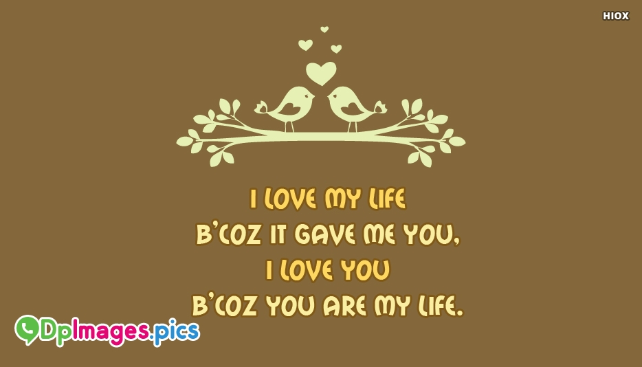 I Love My Life Because It Gave Me You, I Love You Because You AreMy Life