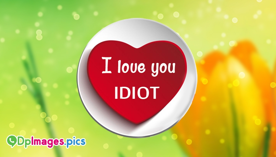 I Love You Idiot - Whatsapp Dp for Proposal