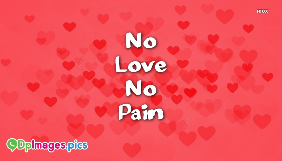 No Love No Pain Steadlaneclub