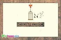 Cheers To Freedom