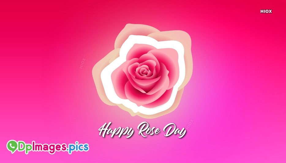 Whatsapp Dp For Rose Day